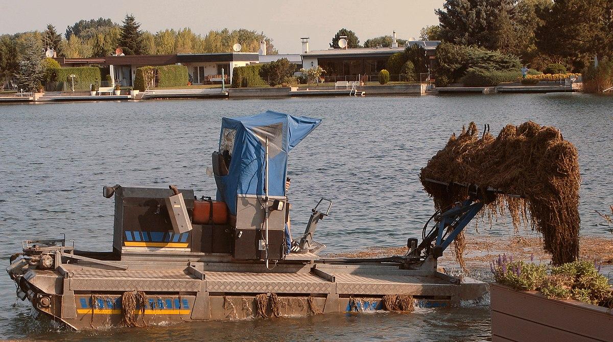 Mähboot beim Aufsammeln cropped.jpg